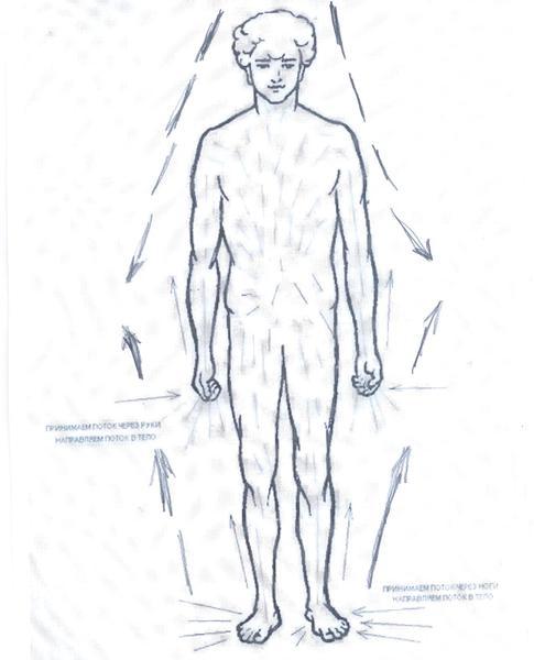 энергетические потоки в теле человека